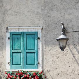 Window by Mihai Cazacu - Buildings & Architecture Other Exteriors ( old, window, blue, flowers, wall )