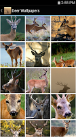 Screenshot of Deer Wallpapers