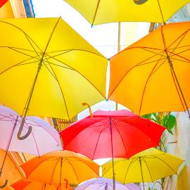 Let it Go Umbrella by Papin Michael - City,  Street & Park  Street Scenes ( street art, chinatown, umbrella, terengganu )