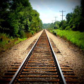 Where To? by Lauren DiScipio - Transportation Railway Tracks ( led photography, railway, railroad, contest, lomo filter,  )