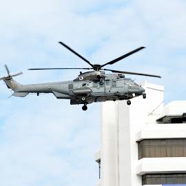 Helicopter by Kamalaprabhu Rathinasamy - Transportation Helicopters ( #helicopter #malaysia #chopper #merdeka )