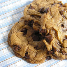 Chewy Vegan Chocolate Chocolate Chip Cookies