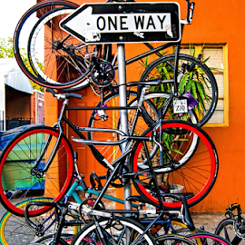 WHICH  WAY? by Kati Garner - Transportation Bicycles ( orange, bicycles, tires, resource magazine, Bicycle, Sport, Transportation, Cycle, Bike, ResourceMagazine, Outdoors, Exercise, Two Wheels )