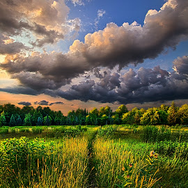 Another Way by Phil Koch - Landscapes Prairies, Meadows & Fields ( wisconsin, vertical, leaves, phil koch, spring, photography, sky, tree, nature, trail, path, horizons, clouds, orange, park, green, twilight, horizon, scenic, shadows, red, blue, sunset, fall, meadow, trees, sunrise, landscapes, hike, floral )