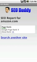 Screenshot of SEO Buddy