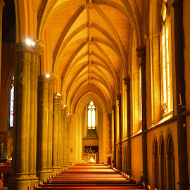 Worship by Tim Bieler - Buildings & Architecture Places of Worship ( catholic, church, melbourne, victoria, cathedral )