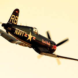 Vought Corsair F4U by Andy Cíger - Transportation Airplanes