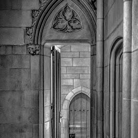 Chapel - Duke University by Craig Boudreaux - Buildings & Architecture Places of Worship ( duke university, church, blue devils, chapel, worship )