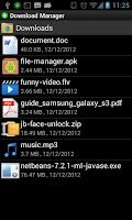 Screenshot of Download Manager