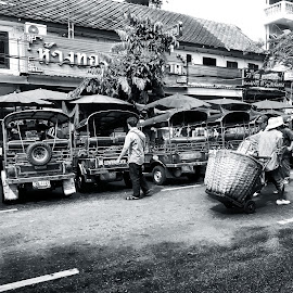 Bangkok Chinatown by Matthäus Rojek - City,  Street & Park  Street Scenes ( grand palace, street, thailand, bangkok chinatown )