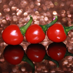 Glowing Chilies by Kaushik Bera - Food & Drink Fruits & Vegetables (  )