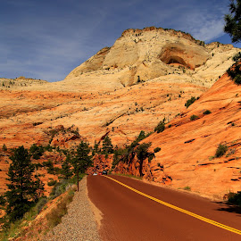 Zion National Park,Utah by Larry Shehane - Landscapes Mountains & Hills