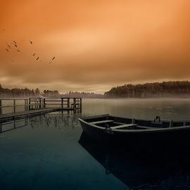 The stillness of the lake by Remigijus Drevinskas - Transportation Boats ( water, sky, fog, trees, forest, lake, bridge, boat, birds )