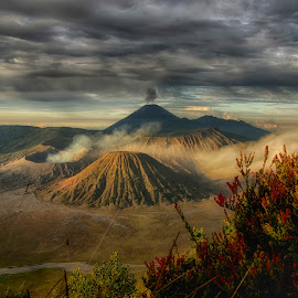 Bromo Mountain by Joeli Oie - Landscapes Mountains & Hills