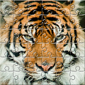 Puzzle Zoo APK for Nokia