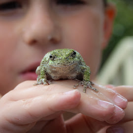 A Boy and his Frog by David Downes - Novices Only Portraits & People