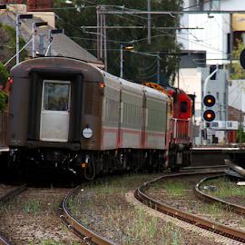 Seymor to Melbourne at Moonie Ponds by Peter Keast - Transportation Trains ( station, commuter, train, transportation )