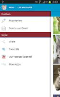 Screenshot of Cute Kittens Wallpapers