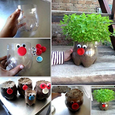 DIY Garden Ideas Creative