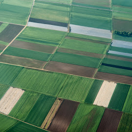 Patterns by Johannes Oehl - Abstract Patterns ( field, flying, frankfurt am main, pattern, street, agriculture, aerial, germany,  )