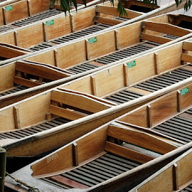 Punts at Cambridge by Edward Grylich - Transportation Boats