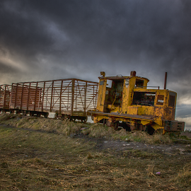 Sky Train by Willie Forde - Transportation Trains ( winter, ireland, train, tracks, irish, bog )