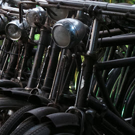 Onthel bike  by Nia Soebrata - Transportation Bicycles