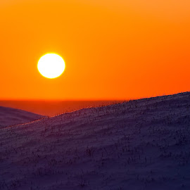 sunrise and snow by Amy Powers Smith - Landscapes Sunsets & Sunrises ( morning sun, snow, sunrise, landscape, close up,  )