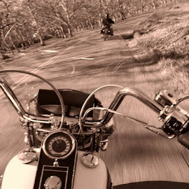 Freedom by Lettie Maciel - Instagram & Mobile iPhone ( ride, harley davidson, freedom, motorcycle, road )