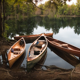 Adirondack Serenity by Betsy Wilson - Landscapes Waterscapes ( wcha, canoes on lake, paddling, paul smiths, canoe, lake, wooden canoes, canoes )