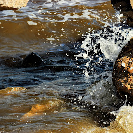 Lake splash by Hossam Halawany - Nature Up Close Rock & Stone