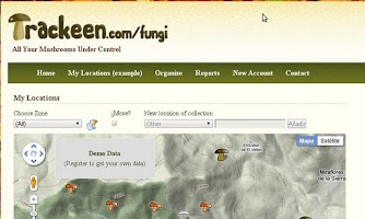 Screenshot of Trackeen Mushroom Edition