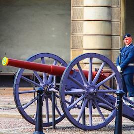 Royal Guard by Foto Woz - Instagram & Mobile Other ( sweden, stockholm, royal guards, royal palace )