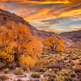 Twilight on Scenic Highway 12 by David Long - Landscapes Prairies, Meadows & Fields ( scenic highway 12, utah, grand escalante )