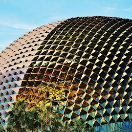 Esplanade by Koh Chip Whye - Buildings & Architecture Other Exteriors ( art theatre, esplanade, singapore,  )