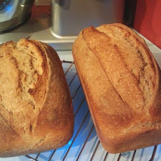 Wheat Sandwich Bread from Amish Starter