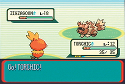 Pokemon Ruby
