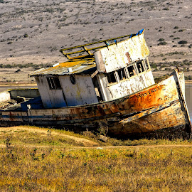 Old Boat by Carol Plummer - Transportation Boats ( old, architecture, boat, decaying, abandoned,  )