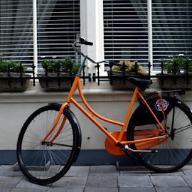 Fanta bike by Mike Bing - City,  Street & Park  Street Scenes ( leiden, orange, holland, bicycle )