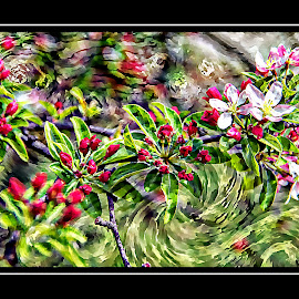 by Alice Gipson - Digital Art Abstract ( alicegipsonphotographs, flower abstract )