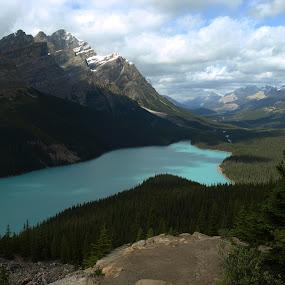 Peyto Lake by Ron Jnr - Landscapes Mountains & Hills ( mountains, blue sky, cloudsscape, landscape photography, tree's, lake, snow capped mountains, landscape, summer time )