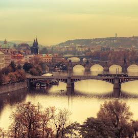 Prague by Tzvika Stein - City,  Street & Park  Vistas ( prague )