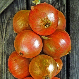 Onions by Michael Moore - Food & Drink Fruits & Vegetables ( onions, vegetables )