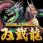 Double Dragon icon