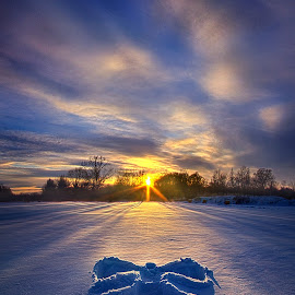 Snow Angel by Phil Koch - Landscapes Prairies, Meadows & Fields ( vertical, farmland, yellow, leaves, love, sky, tree, nature, snow angel, autumn, snow, perspective, light, orange, twilight, art, agriculture, horizon, portrait, angel, environment, winter, dawn, serene, trees, lines, wisconsin, natural light, ray, landscape, phil koch, sun, photography, farm, horizons, inspired, clouds, office, park, green, scenic, morning, shadows, field, red, blue, sunset, peace, meadow, summer, beam, sunrise, earth )