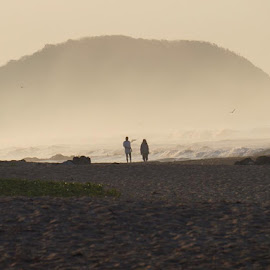 Cloudy Beach by Lori Fix - Landscapes Beaches