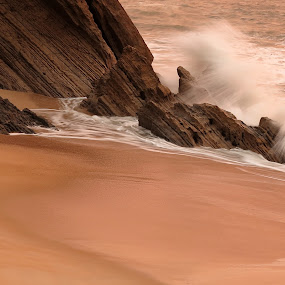 Coisas do mar by Gil Reis - Nature Up Close Sand ( water, beaches, sand, cliffs, nature, waves )