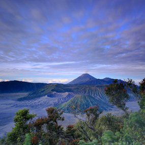 Negeri di Awan by Sulfhian Sultiamiharja - Landscapes Mountains & Hills ( #mountain, #clouds, #love, #sunsrise, #sky, #bromo, #photography )
