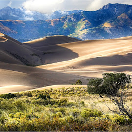 Fall at The Dunes by Dennis Ba - Landscapes Mountains & Hills ( sand dunes, autumn, great sand dunes national park )