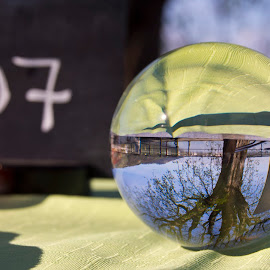 Sea and tree in a sphere by Linda Brueckmann - Artistic Objects Glass (  )